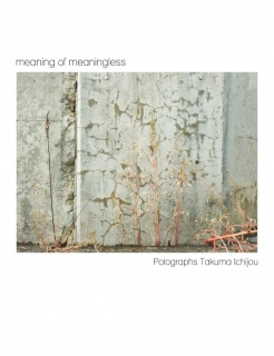 meaning of meaningless