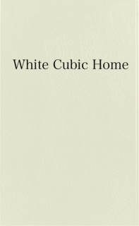 White Cubic Home